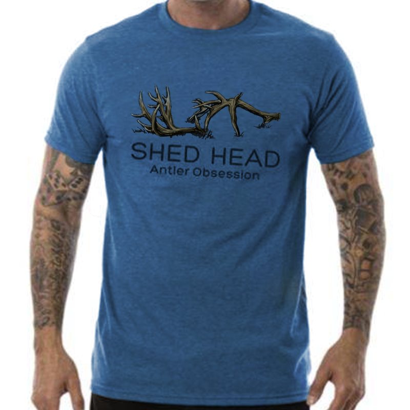 Blue Shed Head Logo