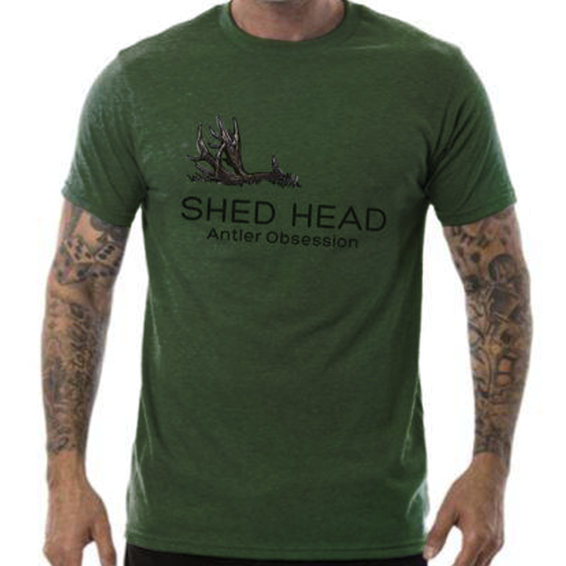 Green Shed Head 1 Antler Deer